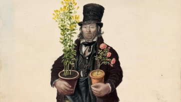 Copeman, gardener, Great Yarmouth by John Dempsey