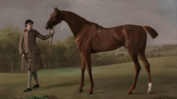 Lustre, held by a Groom, ca. 1762 by George Stubbs